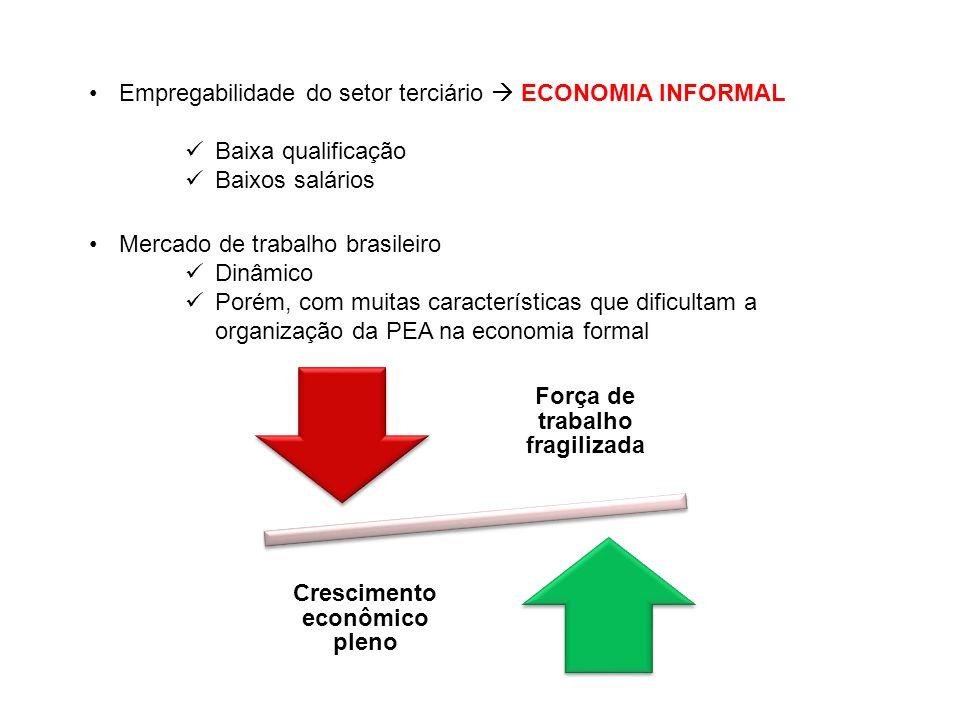 Empregabilidade do setor terciário ECONOMIA INFORMAL Baixa qualificação Baixos salários Mercado de trabalho brasileiro Dinâmico Porém, com muitas cara