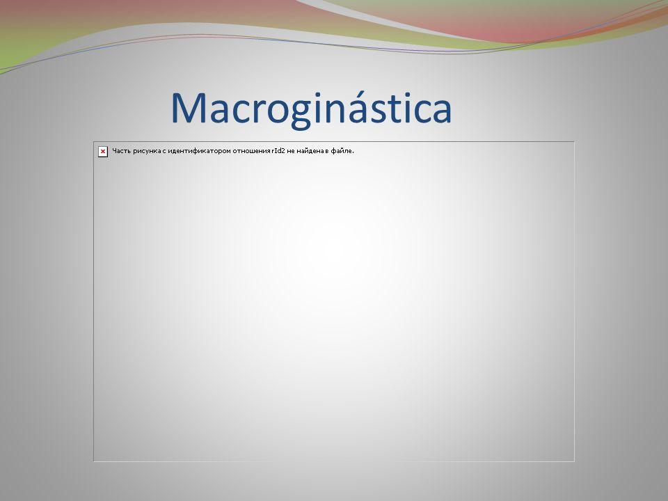 Macroginástica