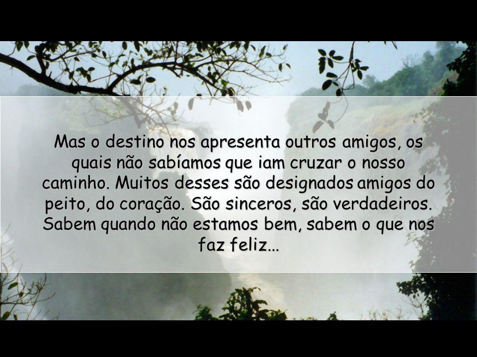 Mas o destino nos apresenta outros amigos, os quais não sabíamos que iam cruzar o nosso caminho.