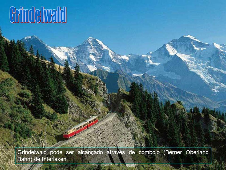 Grindelwald é um município do distrito de Interlaken no cantão de Berna na Suíça.