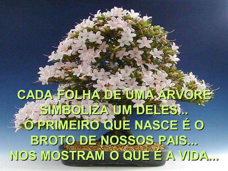 CADA FOLHA DE UMA ÁRVORE SIMBOLIZA UM DELES...O PRIMEIRO QUE NASCE É O BROTO DE NOSSOS PAIS...