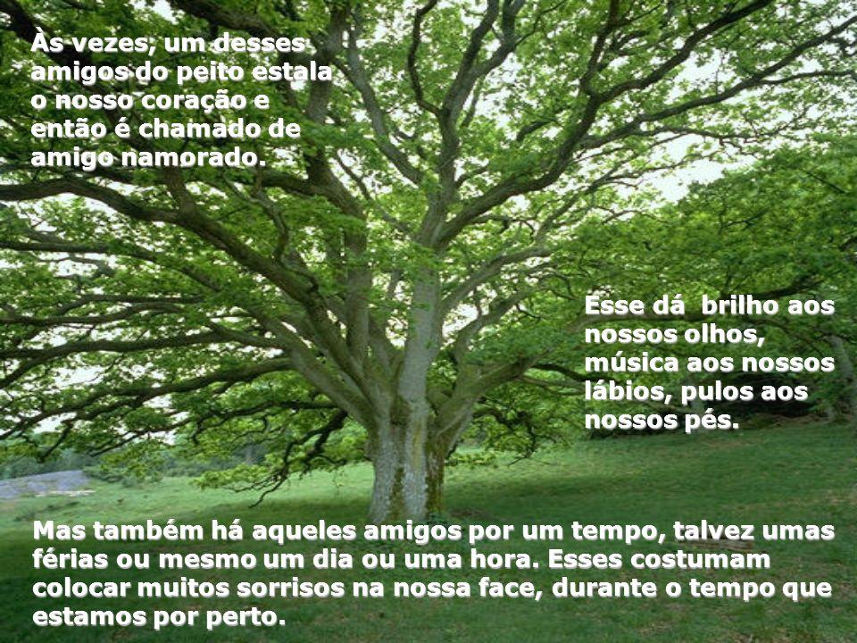 Aqueles que ficam nas pontas dos galhos, mas que quando o vento sopra, sempre aparecem novamente entre uma folha e outra.