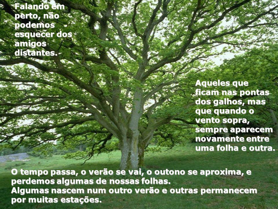 Aqueles que ficam nas pontas dos galhos, mas que quando o vento sopra, sempre aparecem novamente entre uma folha e outra. O tempo passa, o verão se va