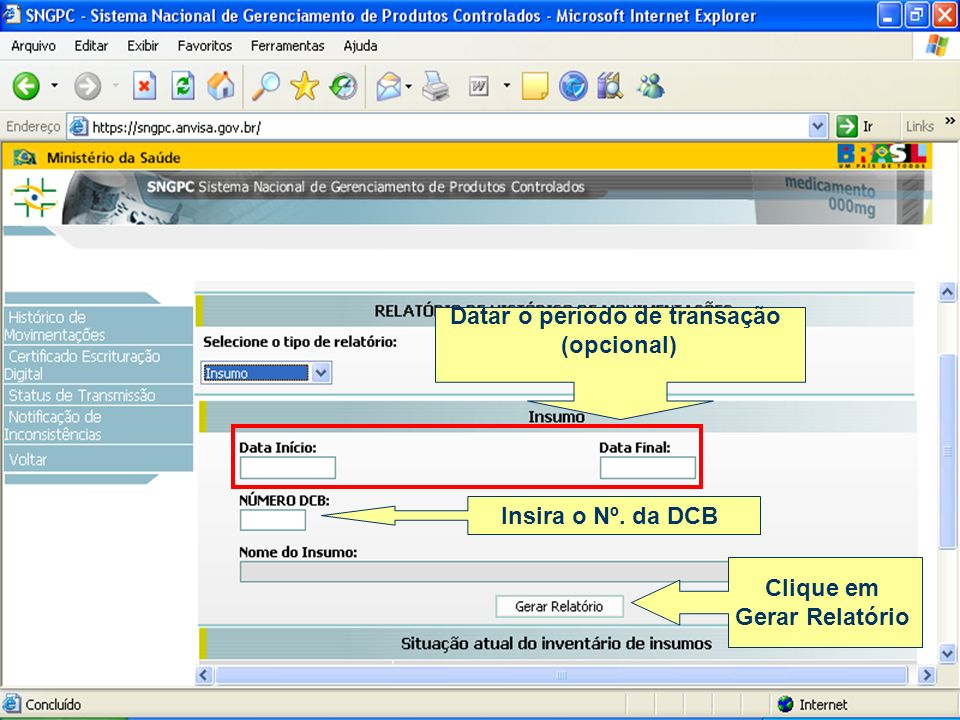 Datar o período de transação (opcional) Clique em Gerar Relatório Insira o Nº. da DCB
