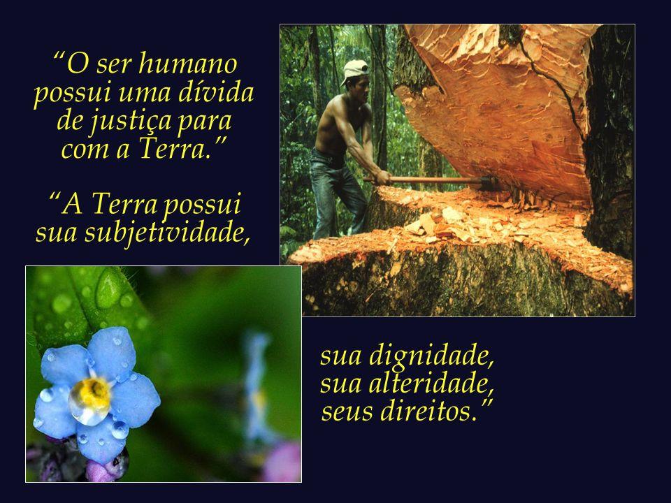 O ser humano elaborou uma relação injusta e humilhante com a natureza.