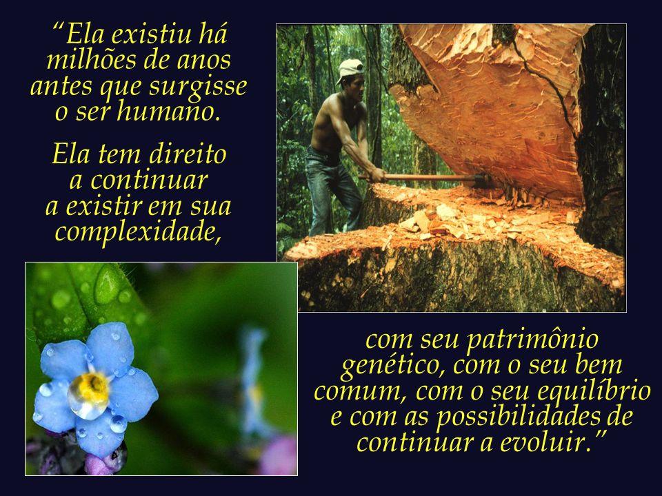 O ser humano possui uma dívida de justiça para com a Terra.