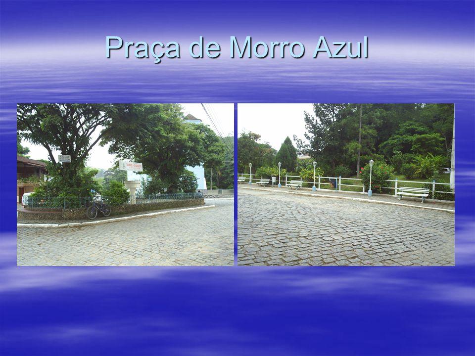 Zoobotânico de Morro Azul Fundado em 01 de outubro de 1996, o Instituto Zoobotânico de Morro Azul é uma entidade de direito privado, sem fins lucrativ