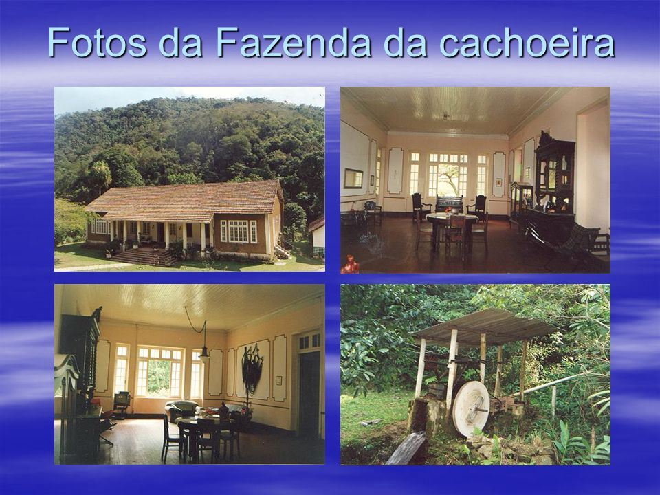 Fazenda da Cachoeira-Morro Azul Doação de 1.250.000 Mts2 de Mata Atlântica A Empresa Sociedade Imobiliária Morro Azul Ltda. Sediada em Morro Azul do T