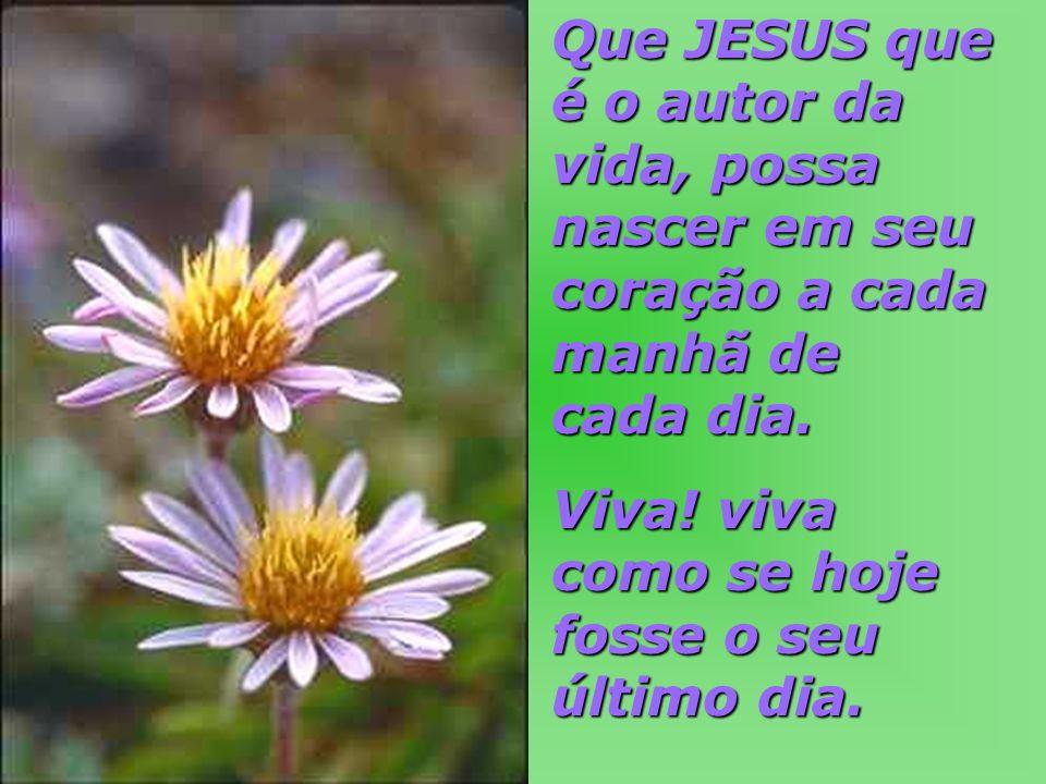 Que JESUS que é o autor da vida, possa nascer em seu coração a cada manhã de cada dia. Viva! viva como se hoje fosse o seu último dia.