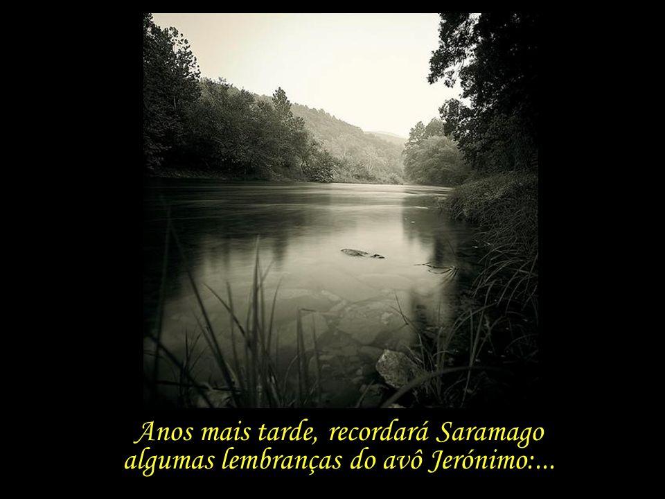 Os peixes que, nadando velozes, mantêm-se, por vezes, imóveis contra a força da corrente...