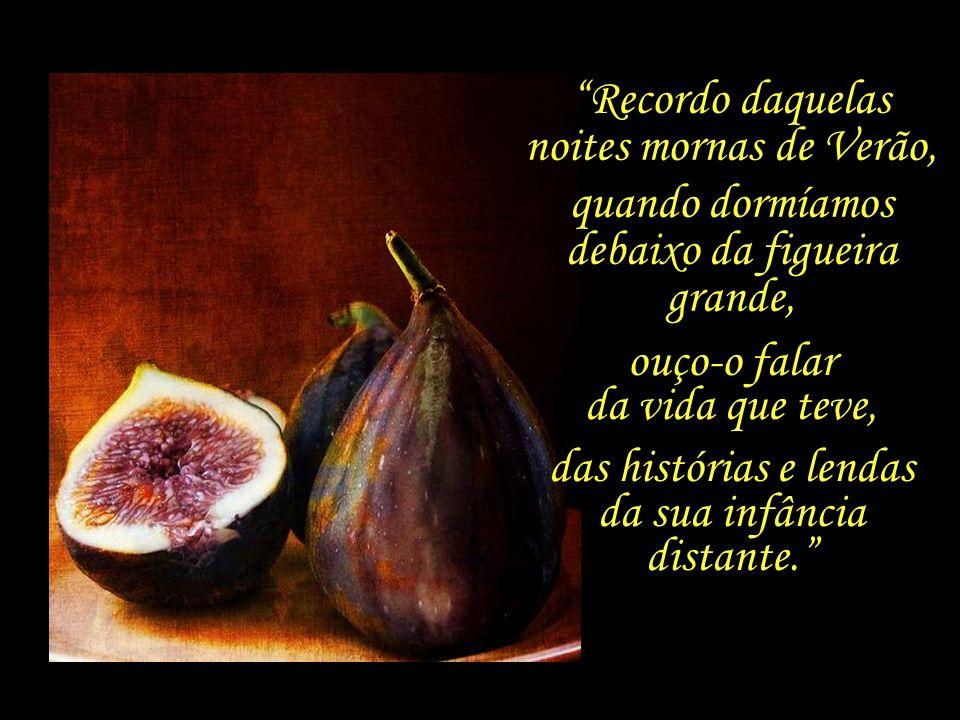 Anos mais tarde, recordará Saramago algumas lembranças do avô Jerónimo:...