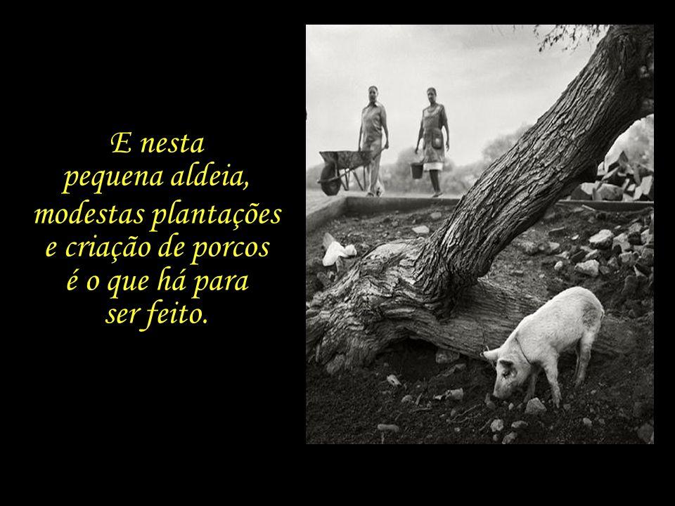 Estamos numa aldeia chamada Azinhaga, no Ribatejo português, a região sul do país onde se produzem azeitonas, cortiça e trigo.