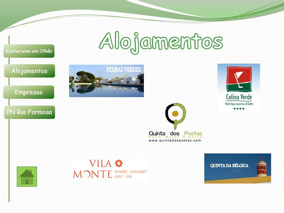 Ecoturismo em Olhão Alojamentos Empresas PN Ria Formosa Pedras Verdes está situada na freguesia de Quelfes.