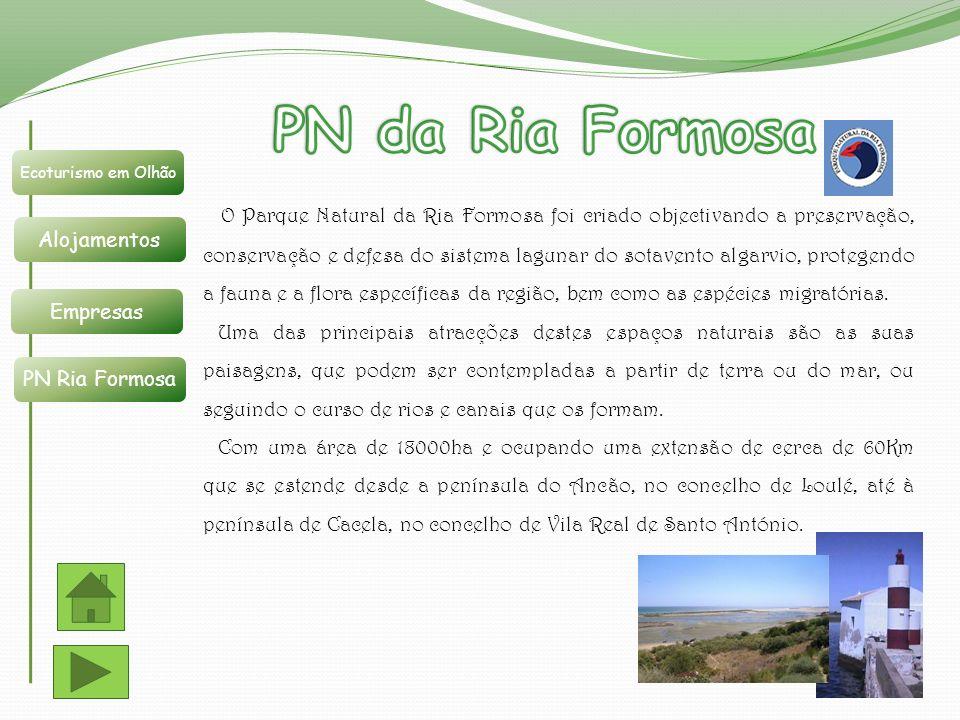 Ecoturismo em Olhão Alojamentos Empresas PN Ria Formosa O Parque Natural da Ria Formosa foi criado objectivando a preservação, conservação e defesa do