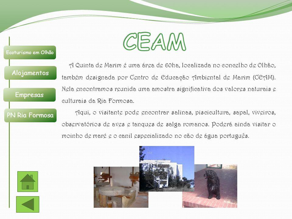 Ecoturismo em Olhão Alojamentos Empresas PN Ria Formosa A Quinta de Marim é uma área de 60ha, localizada no concelho de Olhão, também designada por Ce