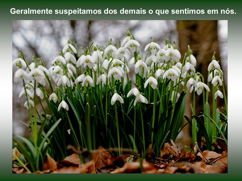 Lamentar uma dor passada, no presente, é criar outra dor e sofrer novamente.