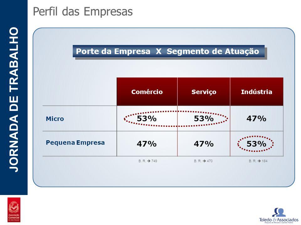 POTENCIAL - LUZIA JORNADA DE TRABALHO Perfil das Empresas Porte da Empresa X Segmento de Atuação ComércioServiçoIndústria Micro 53% 47% Pequena Empres