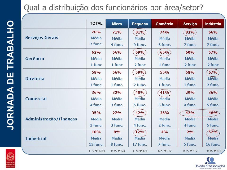 POTENCIAL - LUZIA JORNADA DE TRABALHO Qual a distribuição dos funcionários por área/setor? TOTAL MicroPequenaComércioServiçoIndústria Serviços Gerais
