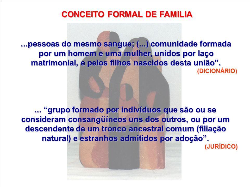 ...pessoas do mesmo sangue; (...) comunidade formada por um homem e uma mulher, unidos por laço matrimonial, e pelos filhos nascidos desta união. (DIC