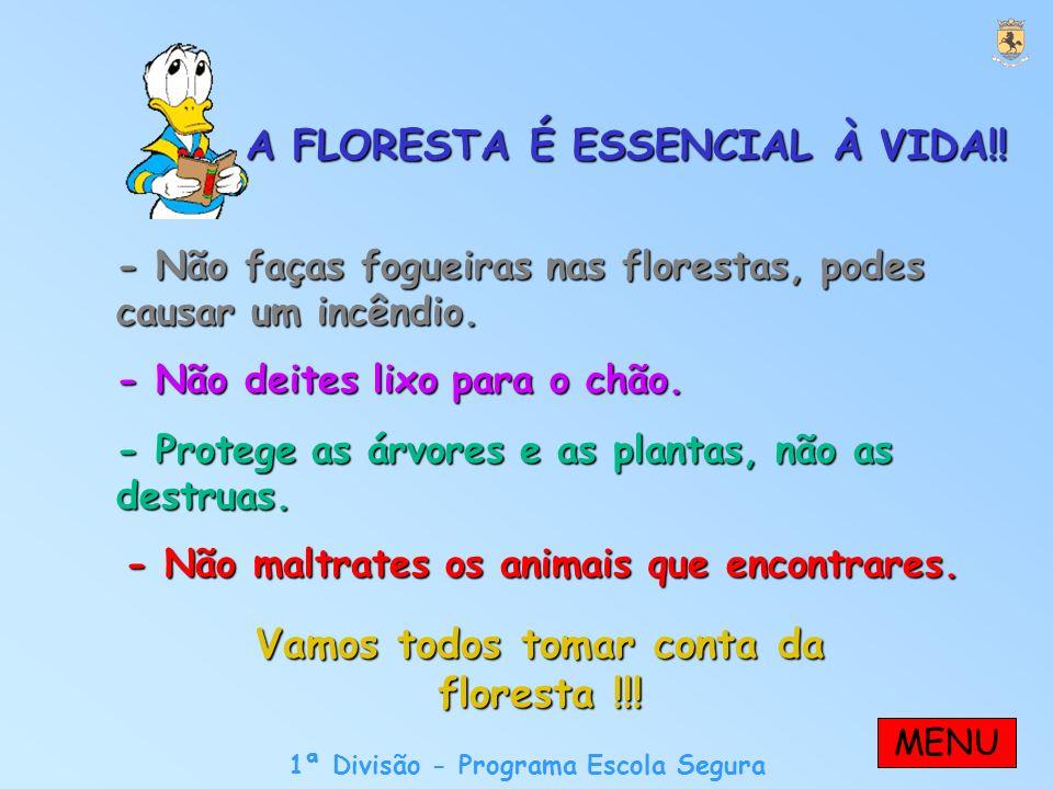 A FLORESTA É ESSENCIAL À VIDA!. Vamos todos tomar conta da floresta !!.