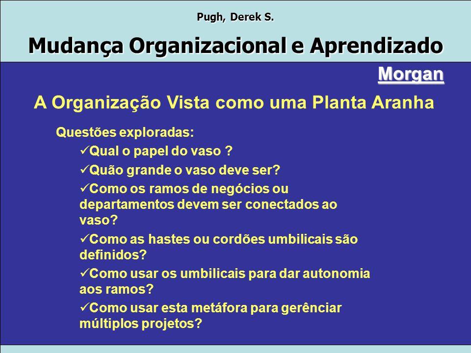 Pugh, Derek S. Mudança Organizacional e Aprendizado Morgan