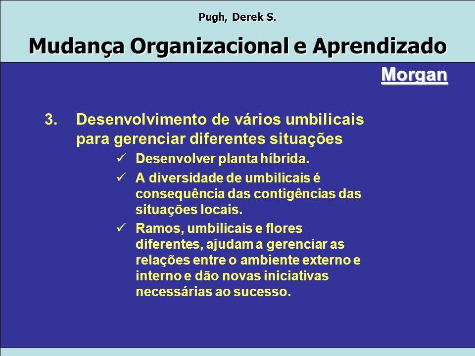 Pugh, Derek S. Mudança Organizacional e Aprendizado Morgan 2.Sucesso na descentralização depende de bons umbilicais Por que descentralizar? Porque não
