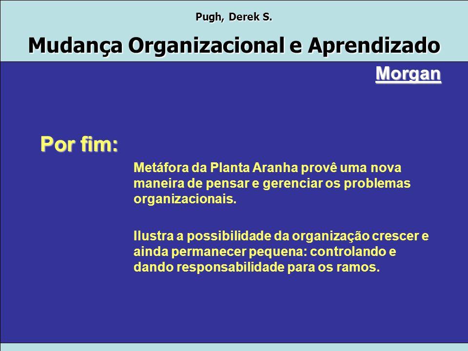Pugh, Derek S. Mudança Organizacional e Aprendizado Morgan 4.Desenvolvimento de abelhas O maior problema das organizações muito descentralizadas é que