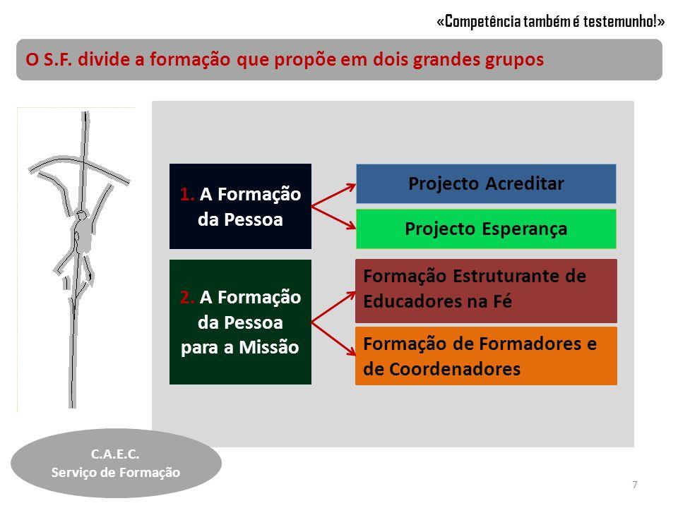 O S.F. divide a formação que propõe em dois grandes grupos «Competência também é testemunho!» 1. A Formação da Pessoa 2. A Formação da Pessoa para a M