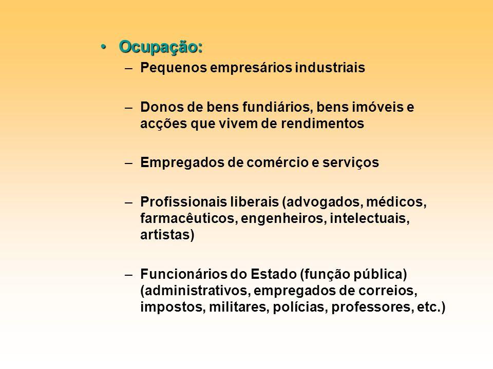 Ocupação: –P–Pequenos empresários industriais –D–Donos de bens fundiários, bens imóveis e acções que vivem de rendimentos –E–Empregados de comércio e