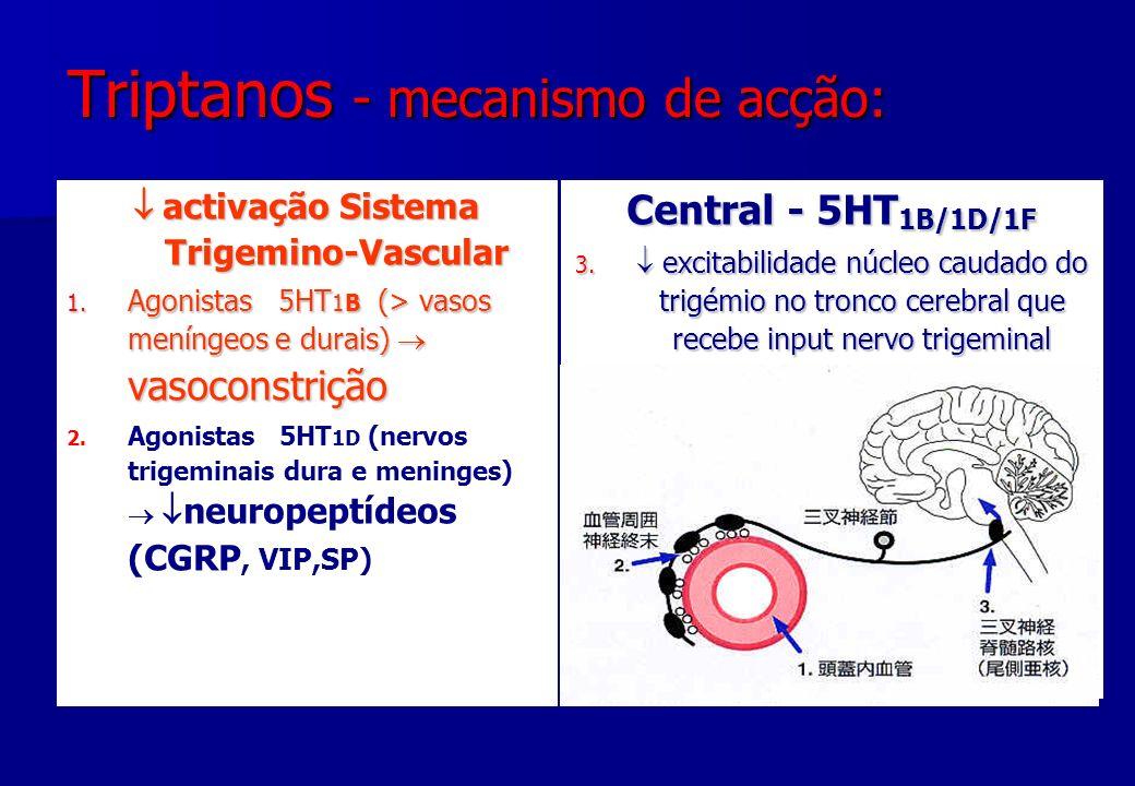 Triptanos - mecanismo de acção: activação Sistema Trigemino-Vascular activação Sistema Trigemino-Vascular 1. Agonistas 5HT 1B (> vasos meníngeos e dur
