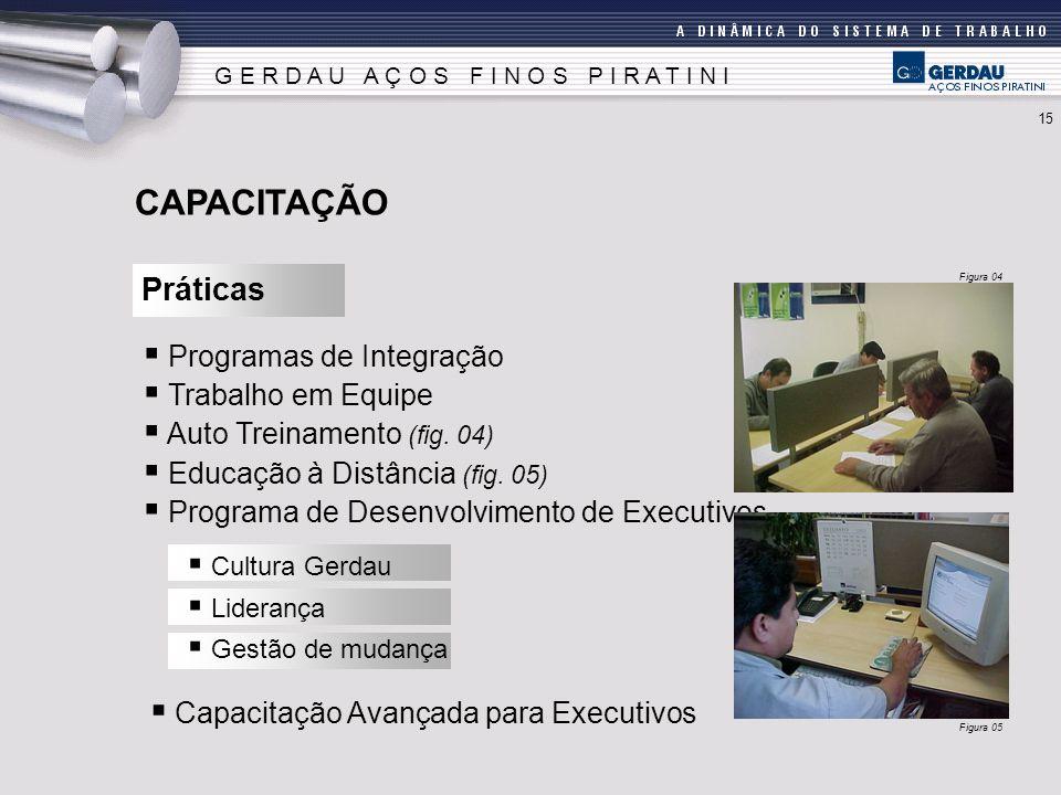 Programas de Integração Trabalho em Equipe Auto Treinamento (fig.