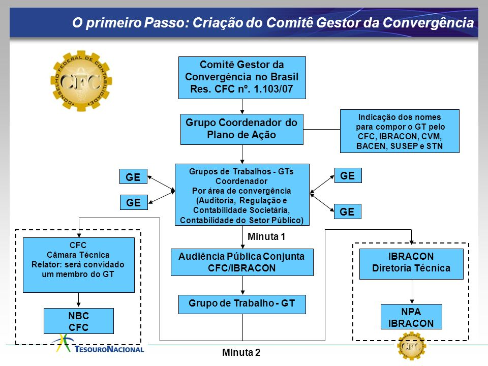 Comitê Gestor da Convergência no Brasil Res. CFC nº. 1.103/07 Grupo Coordenador do Plano de Ação Grupos de Trabalhos - GTs Coordenador Por área de con