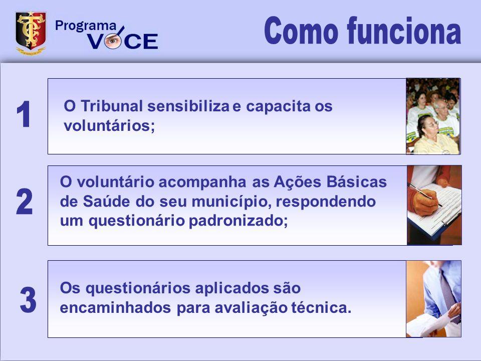 O Tribunal sensibiliza e capacita os voluntários; Os questionários aplicados são encaminhados para avaliação técnica. O voluntário acompanha as Ações