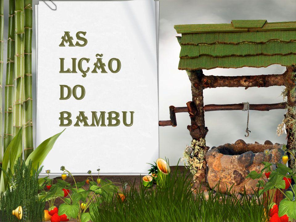 As lição do bambu