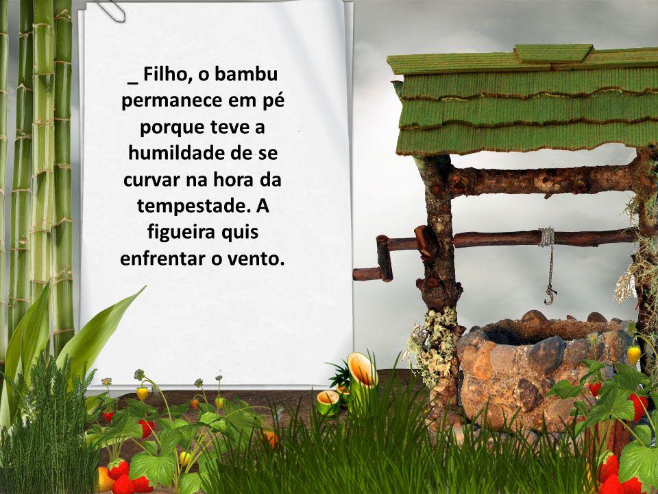 _ Filho, o bambu permanece em pé porque teve a humildade de se curvar na hora da tempestade.