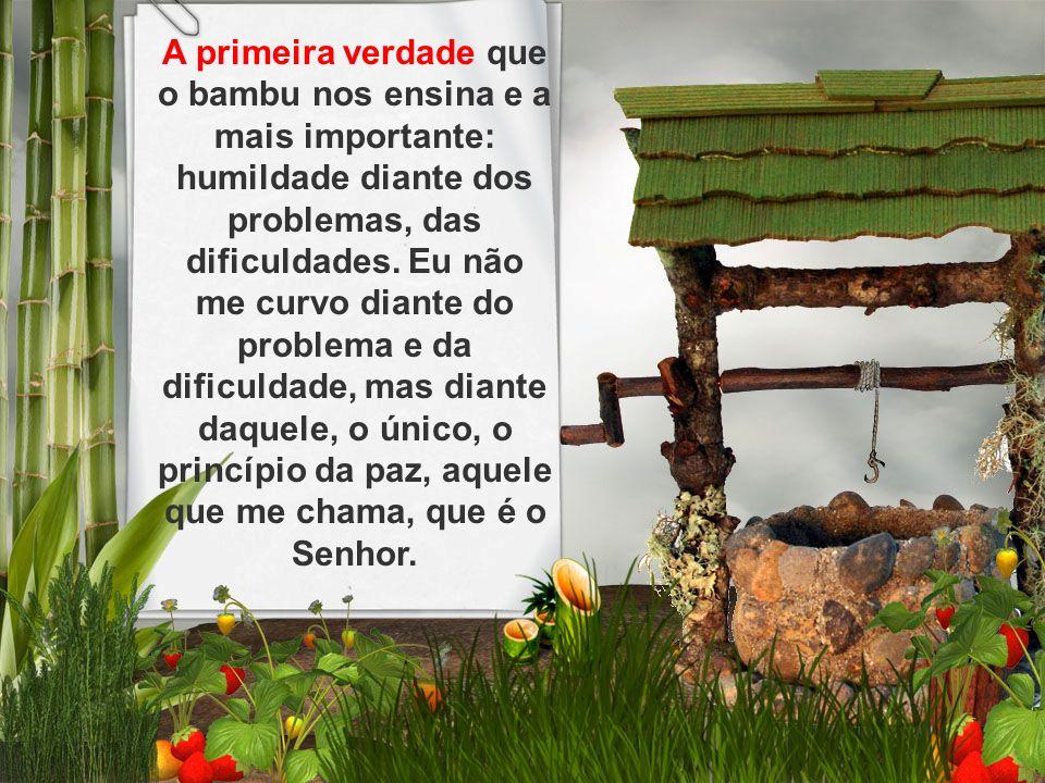 A primeira verdade que o bambu nos ensina e a mais importante: humildade diante dos problemas, das dificuldades. Eu não me curvo diante do problema e