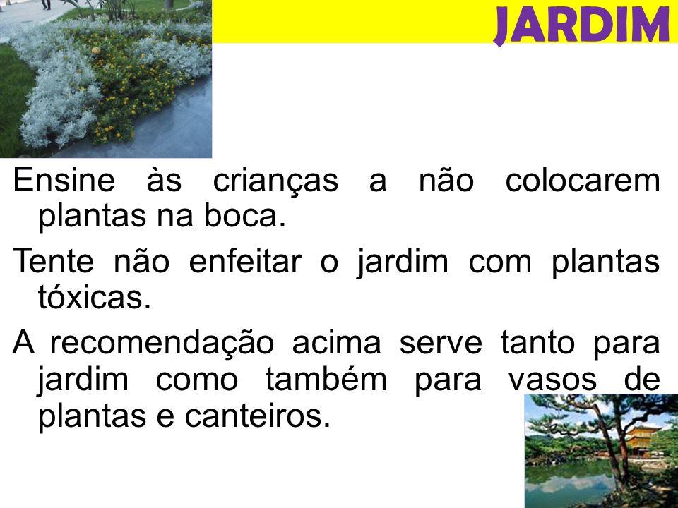 JARDIM Ensine às crianças a não colocarem plantas na boca.