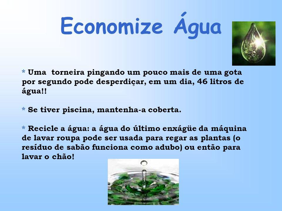 Economize Água * Uma torneira pingando um pouco mais de uma gota por segundo pode desperdiçar, em um dia, 46 litros de água!! * Se tiver piscina, mant