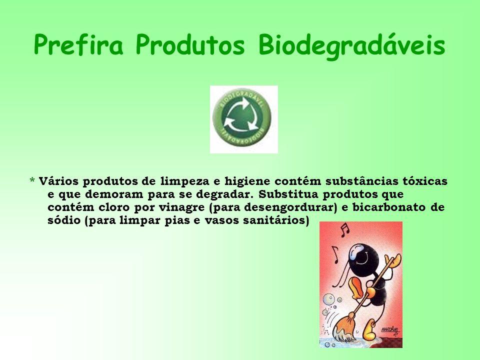 Prefira Produtos Biodegradáveis * Vários produtos de limpeza e higiene contém substâncias tóxicas e que demoram para se degradar. Substitua produtos q