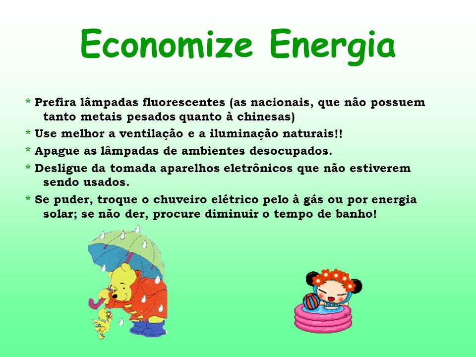 Economize Energia * Prefira lâmpadas fluorescentes (as nacionais, que não possuem tanto metais pesados quanto à chinesas) * Use melhor a ventilação e