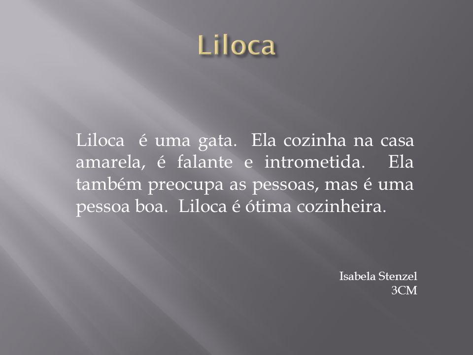 Liloca é uma gata.Ela cozinha na casa amarela, é falante e intrometida.