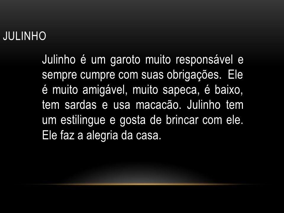 JULINHO Julinho é um garoto muito responsável e sempre cumpre com suas obrigações.