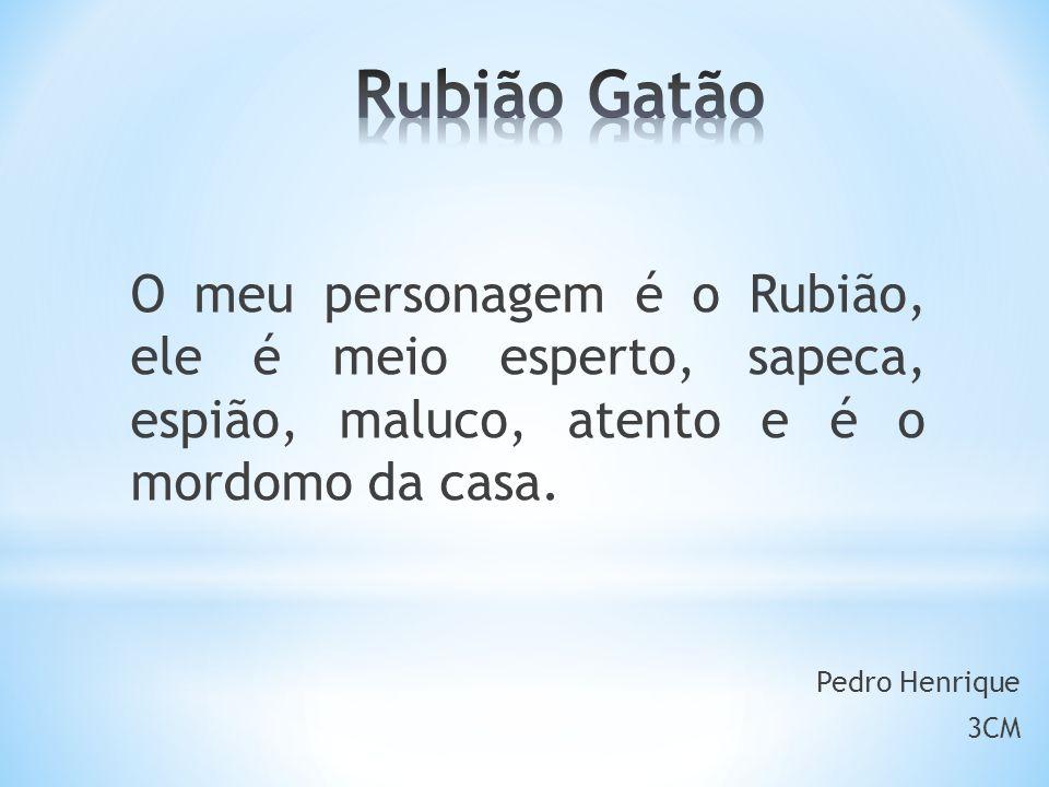 O meu personagem é o Rubião, ele é meio esperto, sapeca, espião, maluco, atento e é o mordomo da casa.
