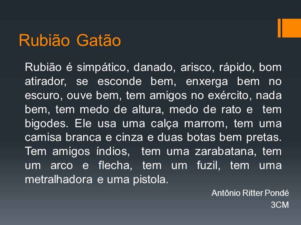 Rubião Gatão Rubião é simpático, danado, arisco, rápido, bom atirador, se esconde bem, enxerga bem no escuro, ouve bem, tem amigos no exército, nada bem, tem medo de altura, medo de rato e tem bigodes.