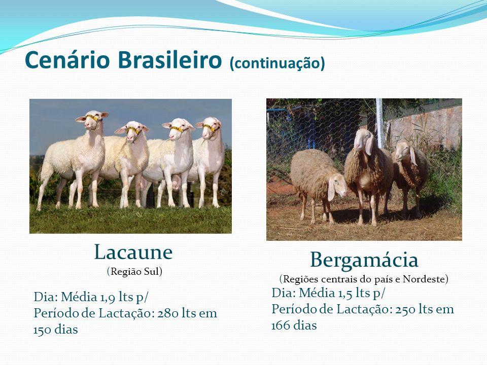 Lacaune (Região Sul) Bergamácia (Regiões centrais do país e Nordeste) Dia: Média 1,9 lts p/ Período de Lactação: 280 lts em 150 dias Dia: Média 1,5 lt