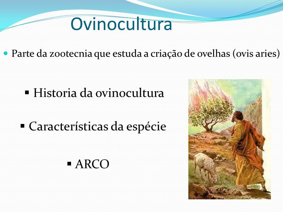 Ovinocultura Parte da zootecnia que estuda a criação de ovelhas (ovis aries) Historia da ovinocultura ARCO Características da espécie