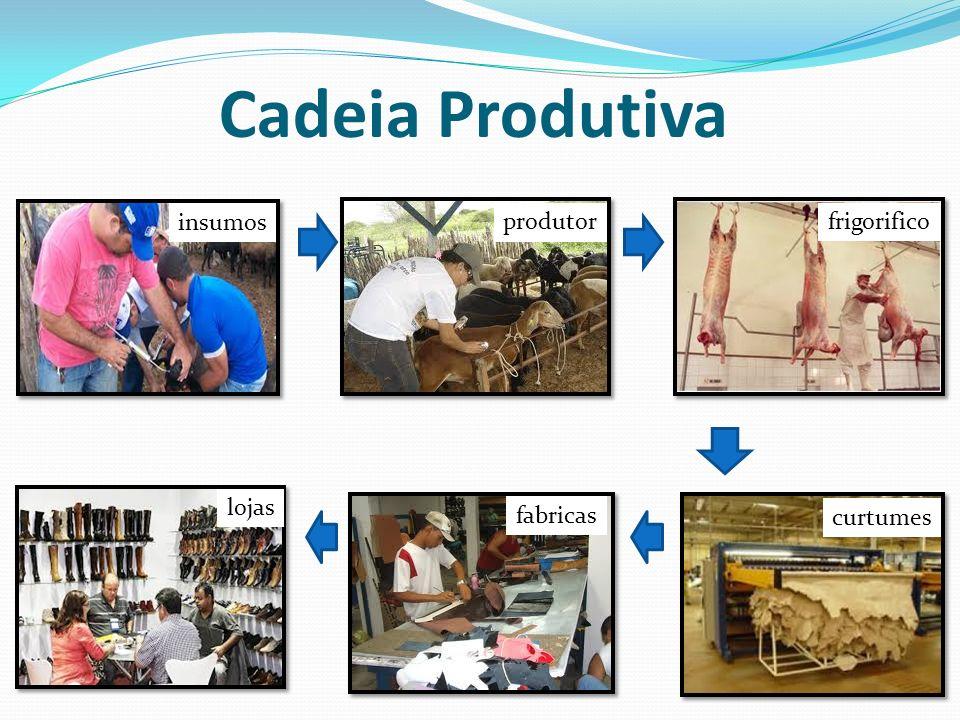 Cadeia Produtiva insumos produtorfrigorifico curtumes fabricas lojas
