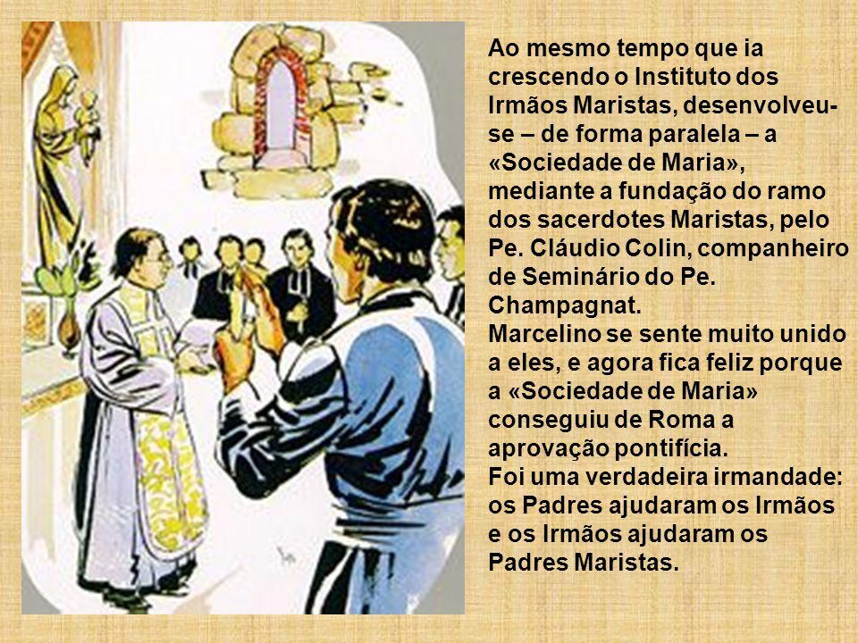 Ao mesmo tempo que ia crescendo o Instituto dos Irmãos Maristas, desenvolveu- se – de forma paralela – a «Sociedade de Maria», mediante a fundação do