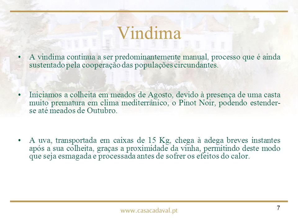 7 Vindima A vindima continua a ser predominantemente manual, processo que é ainda sustentado pela cooperação das populações circundantes. Iniciamos a