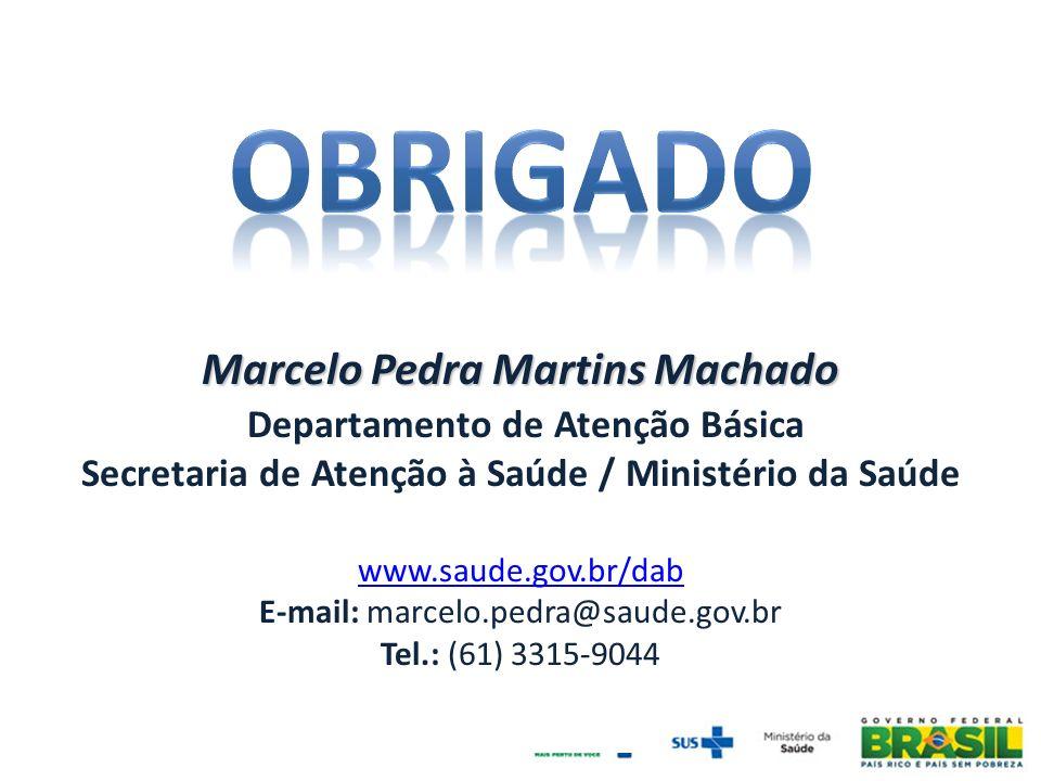 Marcelo Pedra Martins Machado Departamento de Atenção Básica Secretaria de Atenção à Saúde / Ministério da Saúde www.saude.gov.br/dab E-mail: marcelo.pedra@saude.gov.br Tel.: (61) 3315-9044